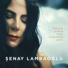 Şenay Lambaoğlu – Böyle Olmasını İstemezdim (Video Klip)